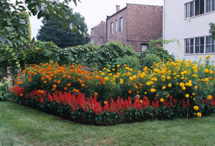 Spacious home garden design ideas Spacious home garden design ideas Spacious home garden design ideas Garden1