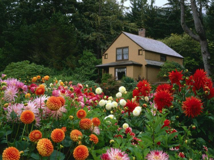 Spacious home garden design ideas Spacious home garden design ideas Spacious home garden design ideas garden house oregon normal