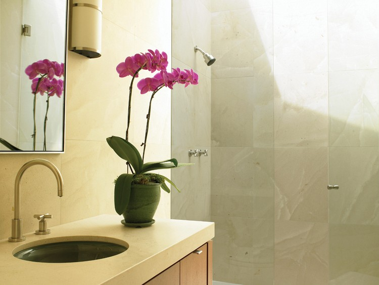 Spring is coming! Decorate your home with flowers. Spring is coming! Decorate your home with flowers Spring is coming! Decorate your home with flowers bathroom1