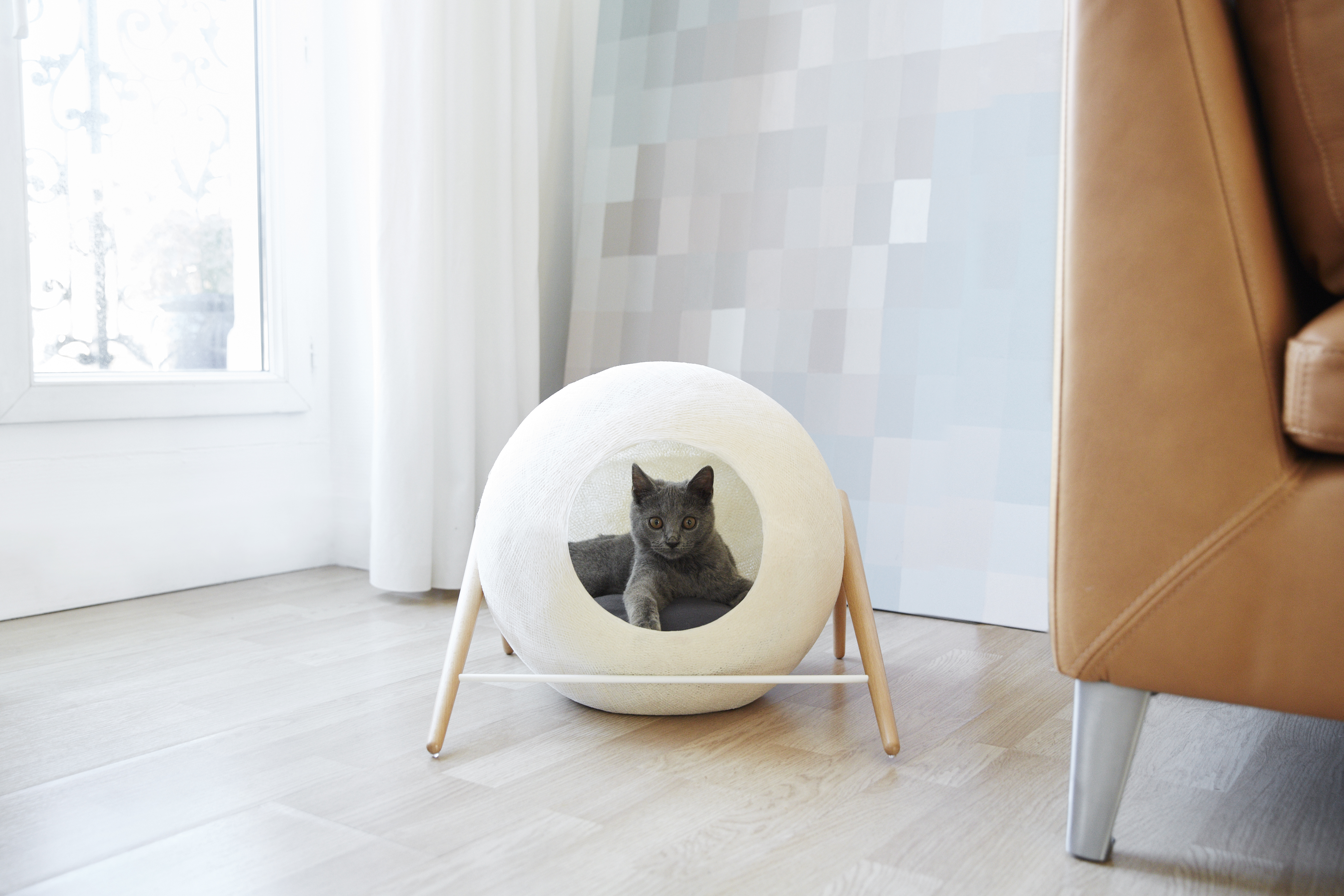 pet beds Stylish pet beds for your home Stylish pet beds for your home cover