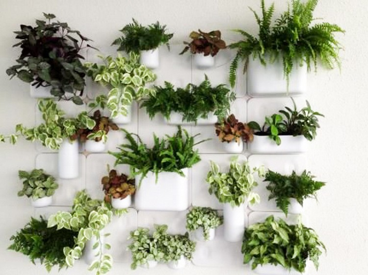Amazing home d cor with greenery home decor ideas for Indoor plants for home decor