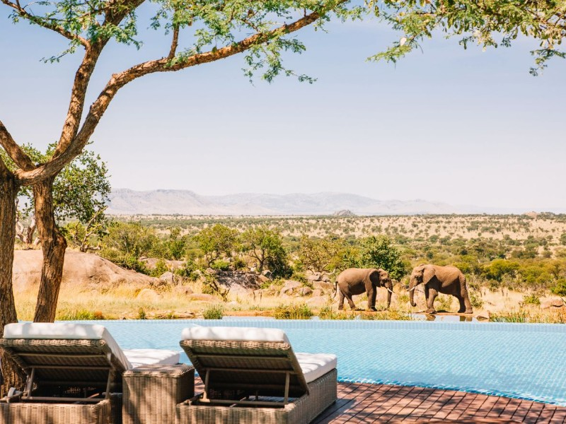 luxury pools luxury pools Discover The Most Astonishing Luxury Pools around the Globe Discover The Most Astonishing Luxury Pools around the Globe 5