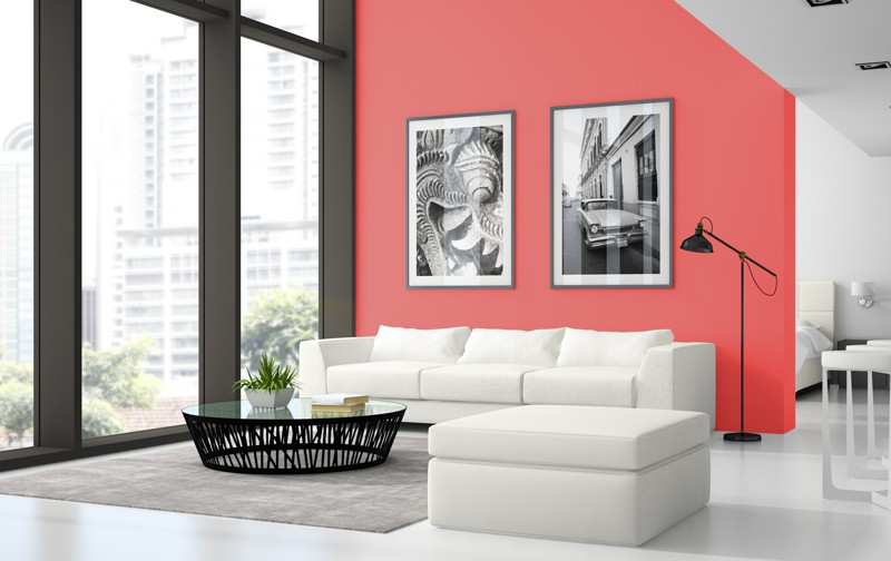 pantone color Living Coral: The Limited Edition Pantone Color Of 2019 Living Coral The Limited Edition Pantone Color Of 2019 7