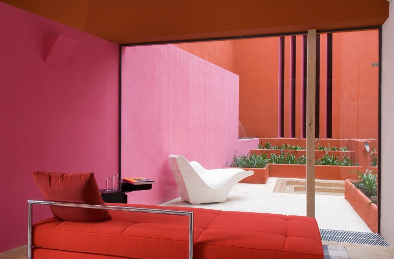 pantone color Living Coral: The Limited Edition Pantone Color Of 2019 Living Coral The Limited Edition Pantone Color Of 2019